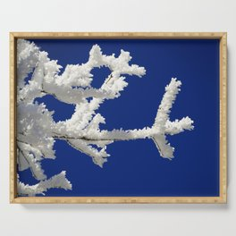 Frozen Branches Serving Tray