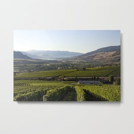 Okanagan Valley Winery Vineyard Landscape Metal Print