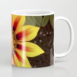 Gazania Flower Coffee Mug