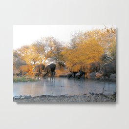 At the watering hole Metal Print