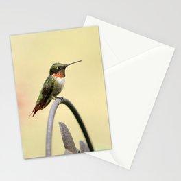 Tiny Hummingbird Stationery Cards