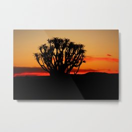 NAMIBIA ... Quiver Tree Sunset Metal Print