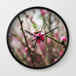 SAKURA Wall Clock