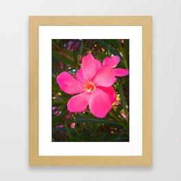 FLOWER N73 Framed Art Print