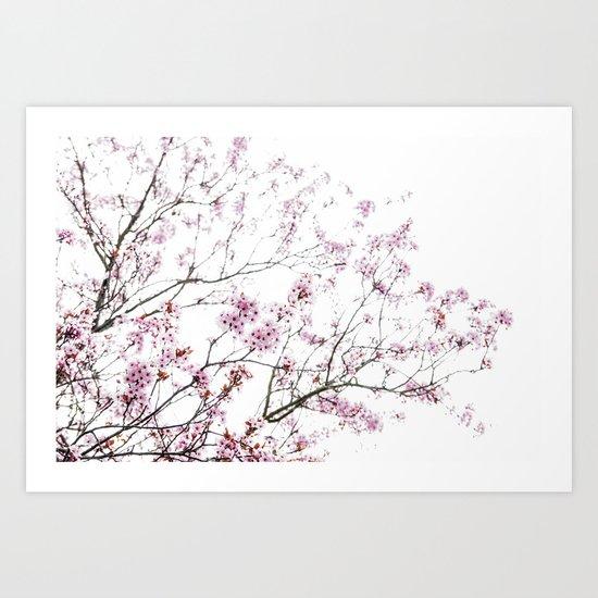 Hanami Art Print