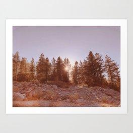 Forest Falls VI Art Print