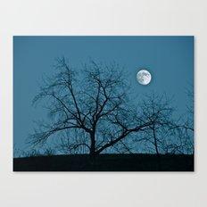 Full Moon 11-8-11 Canvas Print
