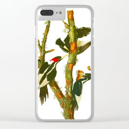 Ivory-billed Woodpecker Clear iPhone Case