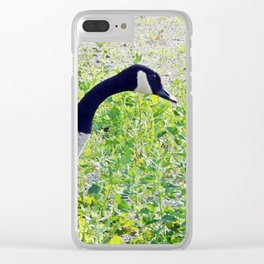 Canada Goose close-up Clear iPhone Case
