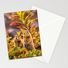 Autumn Picnic Stationery Cards
