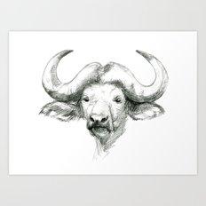African buffalo sketch SK008 Art Print