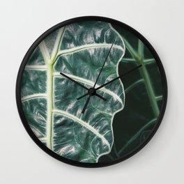 Amazonica Wall Clock