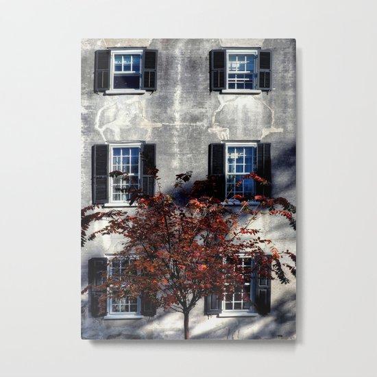 Single House Metal Print
