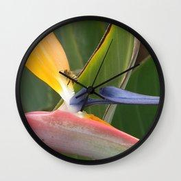 Exiting Paradise Wall Clock