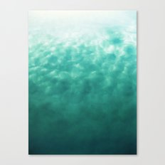 Part of Your World II (Fine Art) Canvas Print