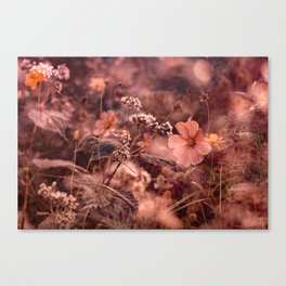 Rust and Blush NC Wildflowers Canvas Print