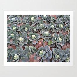 Coles Art Print