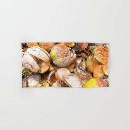 Coconut Husk Photography. Coir. Coconut Fibre. Coir Fibres Hand & Bath Towel