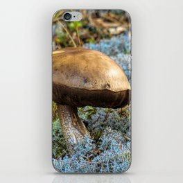 mushroom in swedish forest iPhone Skin