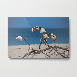 Echoes in the Wind Metal Print