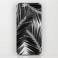 Palm Leaf Black & White III iPhone & iPod Skin