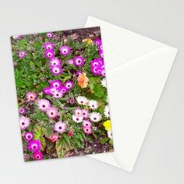 Mesembryanthemum Stationery Cards