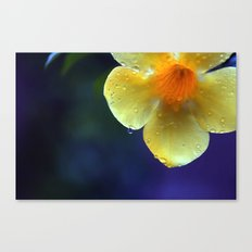 A drop of yellow Canvas Print