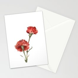 Red Picotee  Stationery Cards
