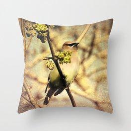 Rustic Cedar Waxwing Bird Modern Country Decor Farmhouse Art A390 Throw Pillow