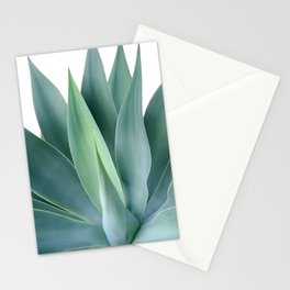 Agave blanco Stationery Cards