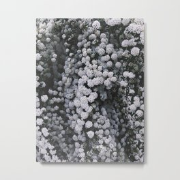 Little White Flowers [Part 1] Metal Print