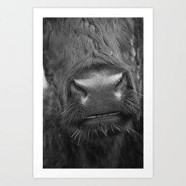 Grinning Cow Art Print