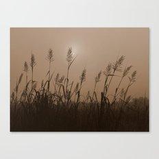 Fog Marsh Sunrise Canvas Print