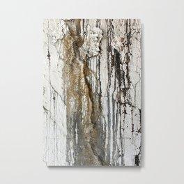 White Decay II Metal Print