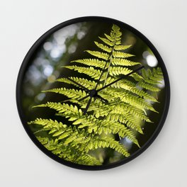 fern in the light, in the Tyrolean Forest, color photo Wall Clock