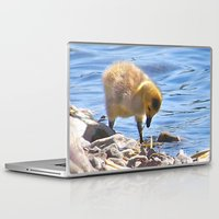 ryan gosling Laptop & iPad Skins featuring Gosling by Heidi Fairwood