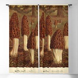 Morel Mushrooms Blackout Curtain