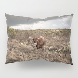 Stare Down - A Texas Bull in the Mesquite and Cactus Pillow Sham