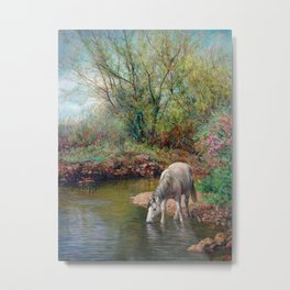 Beautiful White Horse and Enchanting Spring Metal Print