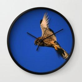 FLIGHT OF THE KESTREL Wall Clock