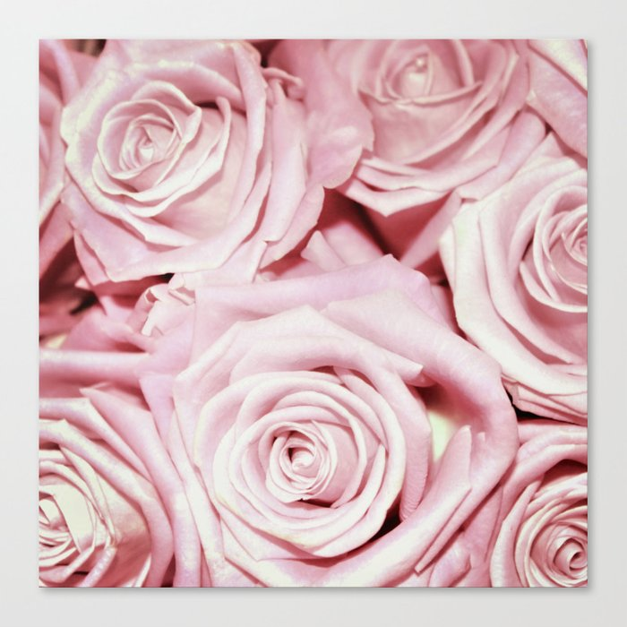 Beautiful bed of pink roses- Floral Rose Flowers Canvas Print