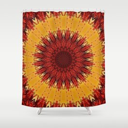 KALEIDOSCOPIC FALL Shower Curtain