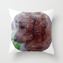 Charly,poodle baby Throw Pillow