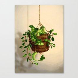 Succulent dragon Canvas Print