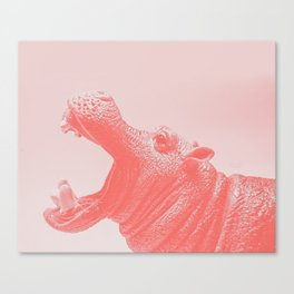 Living Coral Hippo Canvas Print