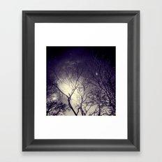Mist in the Forest. Framed Art Print