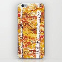 Fall Birch Trees iPhone Skin