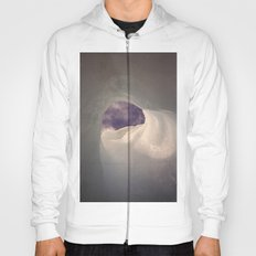 Hole in the ice Hoody