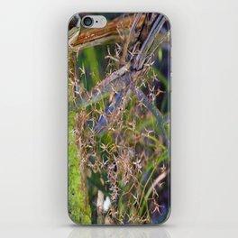 seedhead macro iPhone Skin
