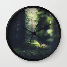 Never trust a fairy Wall Clock